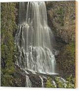 British Columbia Alexander Falls Wood Print