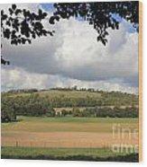British Countryside Sussex Uk Wood Print