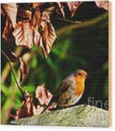British Nature Wood Print