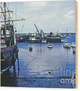 Brixham Port Wood Print