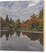 Broad Skies And Fall Colors Wood Print
