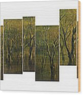 Broken Forest Wood Print