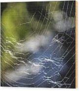 Broken Web Wood Print