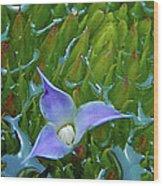 Bromeliad Pond Wood Print