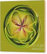 Bromiliad Orb Wood Print