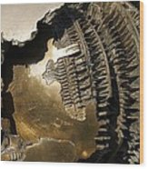 Bronze Abstract Wood Print
