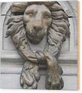 Bronze Lion Wood Print
