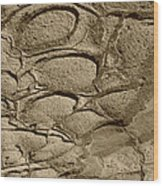 Bronze Mud Patterns 2 Wood Print