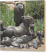 Bronze Pride Of Lions Wood Print