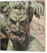 Bronze Satyr In The Fountain Of Neptune Of Florence Wood Print