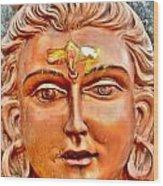 Bronze Shiva Statue - Uttarkashi India Wood Print