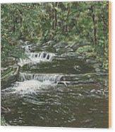Brook In Spruceton Wood Print