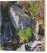 A Brook In The Wicklow Mountains, Ireland Wood Print