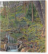 Brook Wood Print