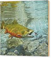 Brook Trout And Silver Doctor Wood Print