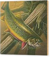 Brook Trout  Hideaway Wood Print