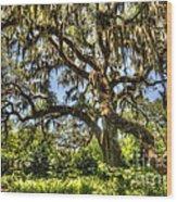 Brookgreen Gardens Wood Print