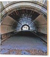 Brooklyn Prospect Park Tunnel Wood Print