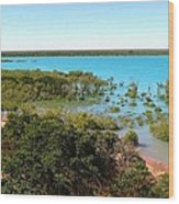 Broome Mangroves Wood Print