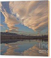 Broomtail Sky Wood Print
