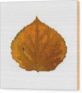 Brown And Orange Aspen Leaf 1 Wood Print