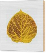 Brown And Yellow Aspen Leaf 2 Wood Print
