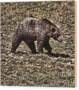 Brown Bears Wood Print by Angel Jesus De la Fuente