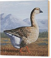 Brown Chinese Goose Wood Print by Crista Forest