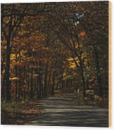 Brown County State Park Wood Print