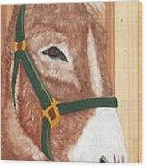 Brown Donkey On Cedar Wood Print