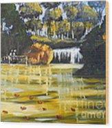 Brown Ducks Near The Waterfall Wood Print