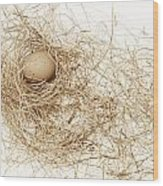 Brown Egg In Bird Nest Sepia Wood Print
