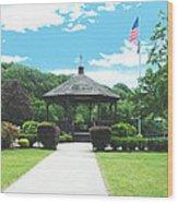 Brown Park Wood Print