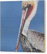 Brown Pelican Head Shot Wood Print
