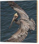 Brown Pelican Landing 2 Wood Print