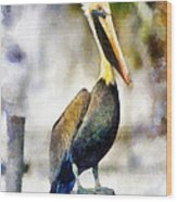 Brown Pelican Wood Print by Lester Phipps