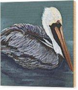 Brown Pelican On Water Wood Print