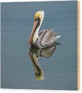 Brown Pelican Reflection Wood Print