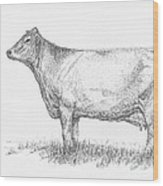 Brown Swiss Dairy Cow Wood Print by J E Vincent