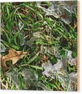 Brownleafsnowgrasscomp 2009 Wood Print