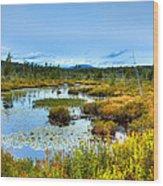 Browns Tract Inlet Waterway Wood Print