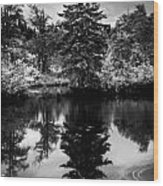 Brownsmead Reflection Wood Print