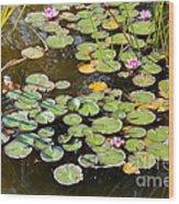 Bruges Lily Pond Wood Print