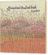Bruised Reed Wood Print by Catherine Saldana