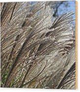 Brushes Of Autumn  Wood Print