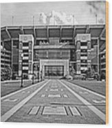 Bryant Denny Stadium 2011 Wood Print