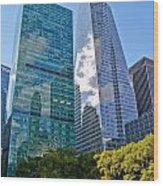 Bryant Park And Architecture Wood Print
