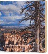 Bryce Canyon 1 Wood Print