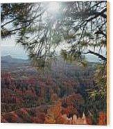 Bryce Canyon 3 Wood Print