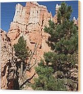 Bryce Canyon Fins Wood Print